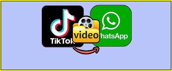 Все способы о том, как отправлять видео из ТикТока в Ватсап