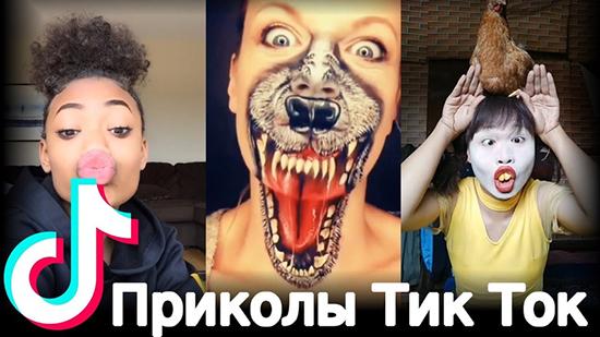 Где находить самые прикольные и смешные видео в Тик ток